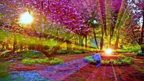 Conscio, subconscio, e Ipnosi